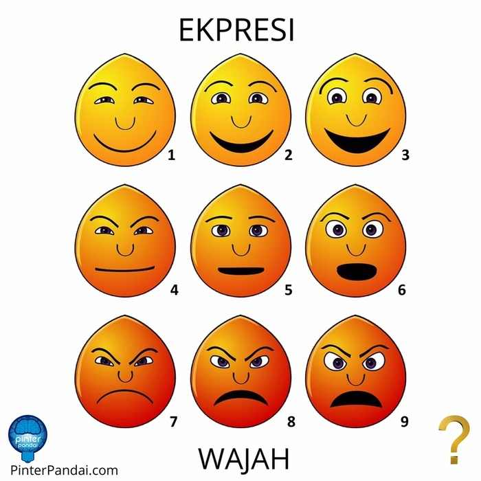 Wajah Muka Terutama Digunakan Untuk Ekspresi Wajah Mikro Ekpresi