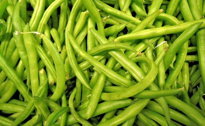 khasiat sayur buncis