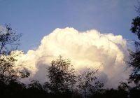 Jenis awan kumulus