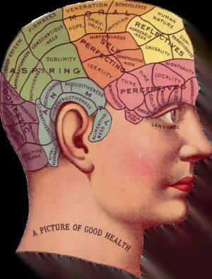Menghitung Usia Mental kepala