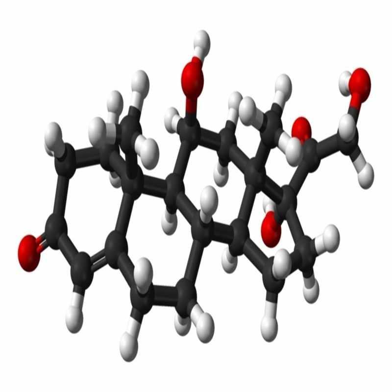 Hormon stres kortisol