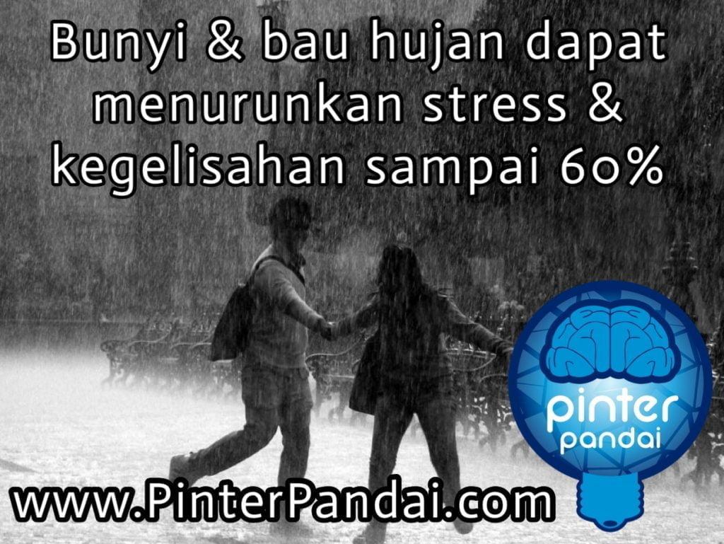 Bunyi dan bau hujan dapat menurunkan stress & kegelisahaan sampai 60%