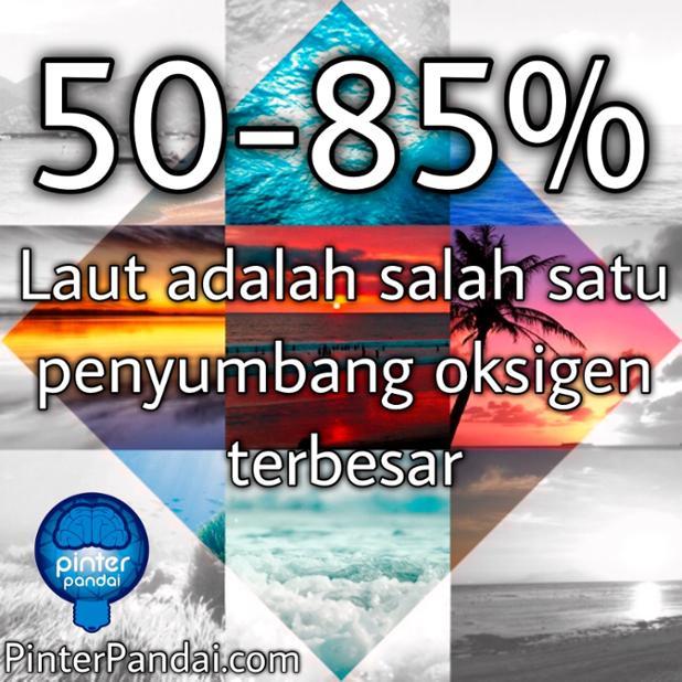 Laut adalah salah satu penyumbang oksigen terbesar