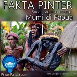 Mumi Papua Indonesia