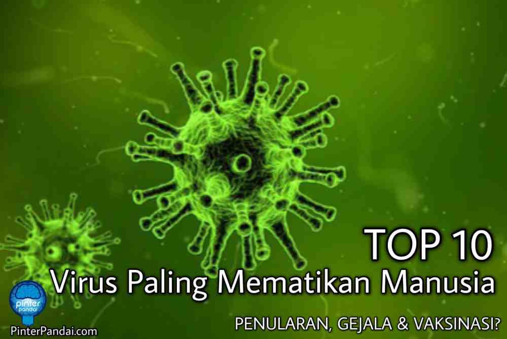 TOP 10 Virus paling mematikan manusia
