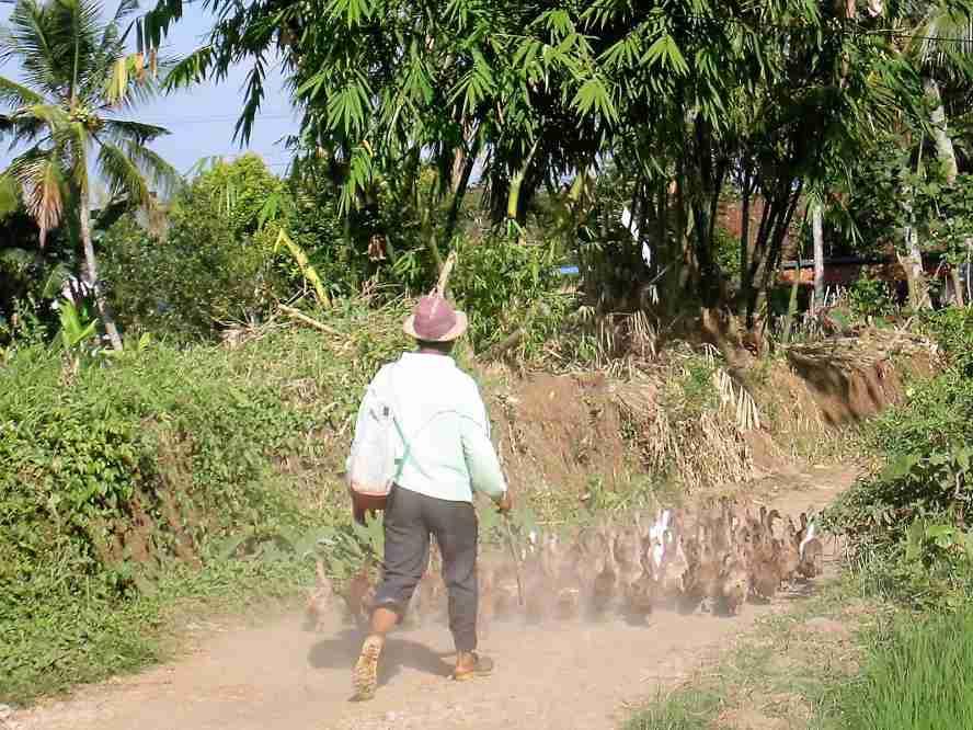 Harapan Hidup Orang Indonesia