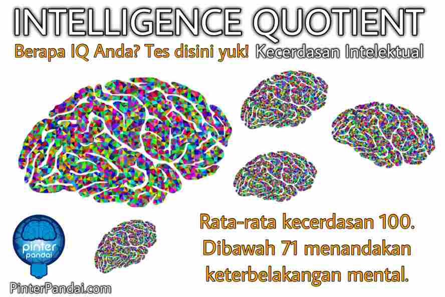 Tes IQ gratis online