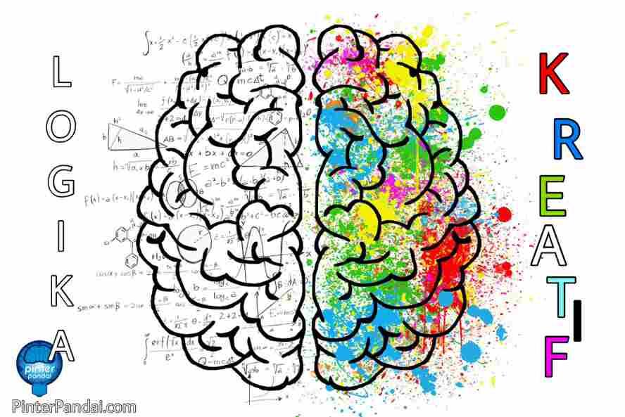 Fungsi Otak Kiri Dan Kanan