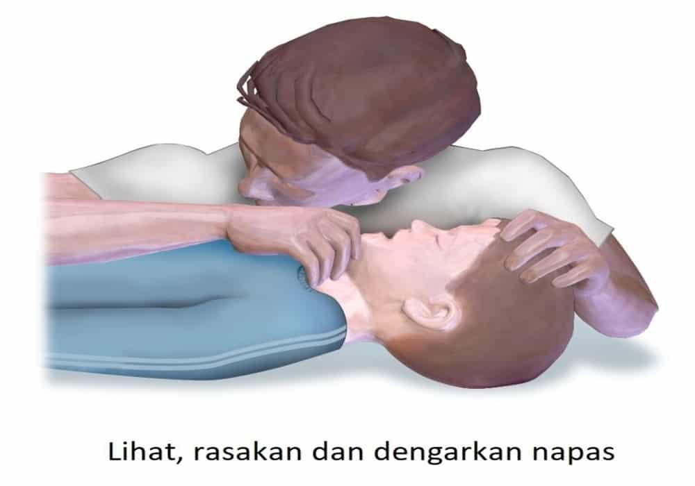 CPR lihat rasakan dengarkan napas