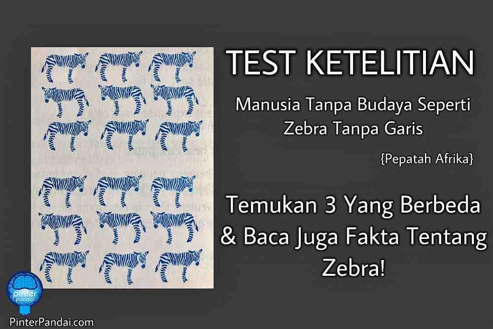 Fakta Zebra
