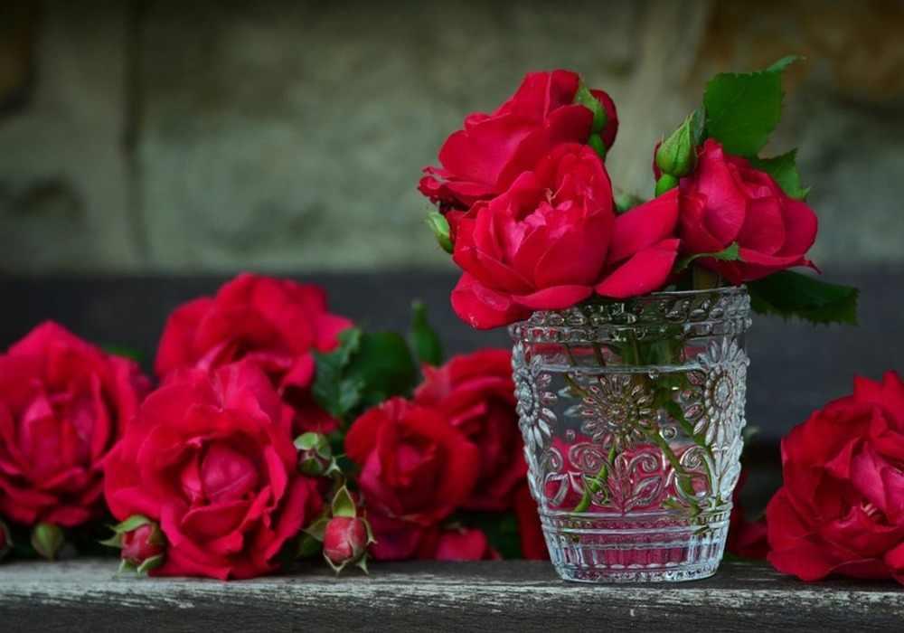 Arti mimpi mawar
