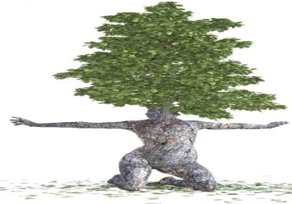 Manfaat Kayu Bagi Manusia Kayu telah menjadi pusat hampir dari setiap kebudayaan di dunia. Manusia telah menggunakannya selama berabad-abad untuk berburu, menyimpan makanan, dekorasi dan untuk membangun tempat berlindung dan beragam kegunaan yang tak terbayangkan. Bahkan mobil dan pesawat pertama pun dibangun dari kayu! Berikut adalah manfaat kayu bagi manusia