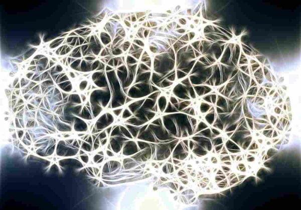 kebiasaan mengasah otak