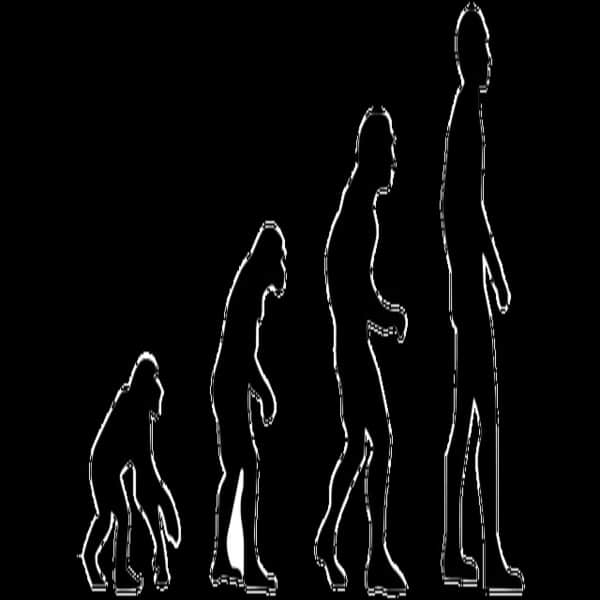 Evolusi Manusia Purba