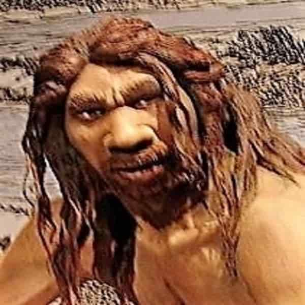 Penafsiran artistik Homo heidelbergensis