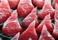 Permukaan lidah manusia di bawah mikroskop