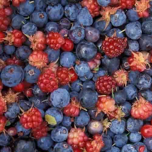 Buah Beri - makanan penurun darah tinggi