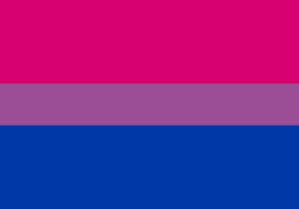 Orientasi seksual - Bendera simbol biseksual