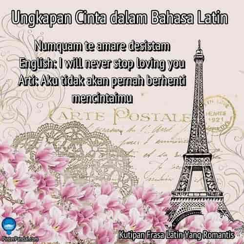20 Ungkapan Cinta Dalam Bahasa Latin Kutipan Frasa Latin Romantis