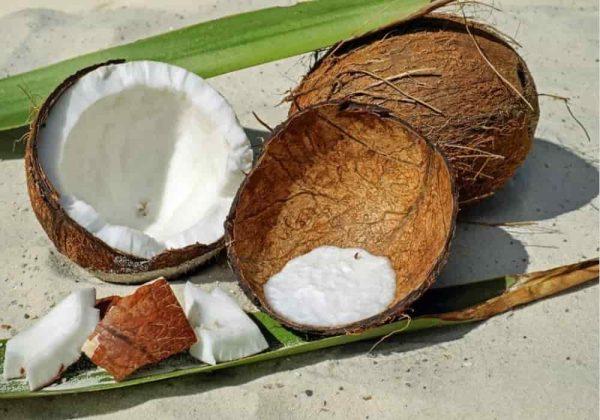 Cara membuat arang dari batok kelapa