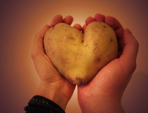 Letak Jantung Manusia di Kiri atau Kanan?