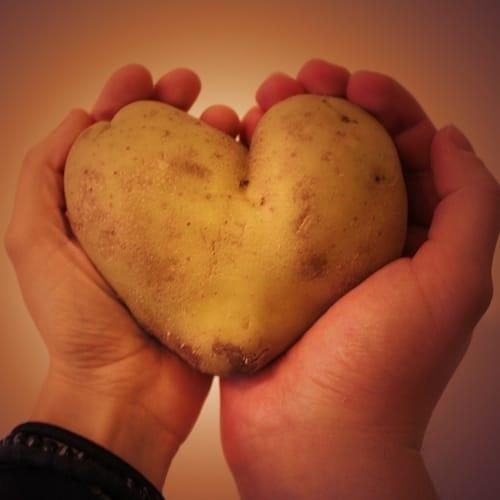 Letak jantung manusia