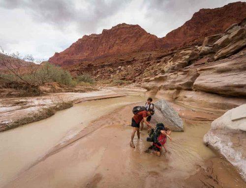Pasir Hisap – Fakta dan Cara Keluar dari Pasir Hisap