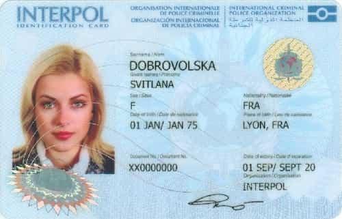 Kartu identitas interpol