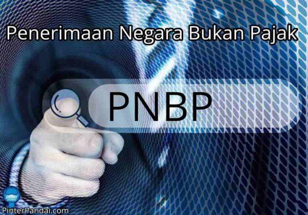 PNBP Penerimaan Negara Bukan Pajak