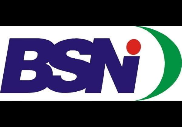 BSN Badan Standardisasi Nasional