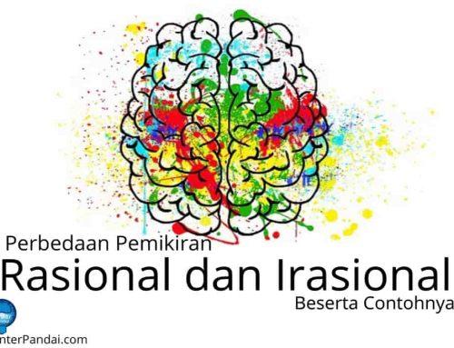 Perbedaan Pemikiran Rasional dan Irasional – Beserta Contohnya