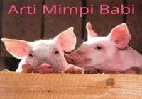 Arti mimpi babi