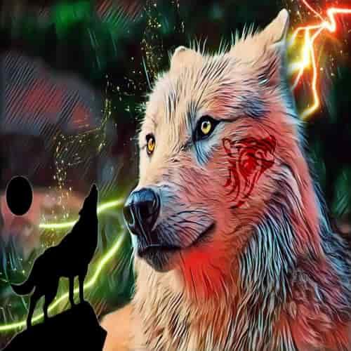 Arti mimpi serigala melolong