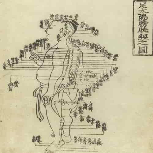 Grafik akupunktur dari Shisi jing fahui - Ekspresi dari 14 Meridian