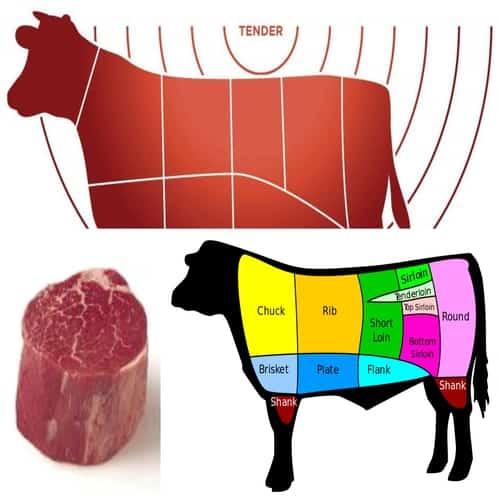 Bagian daging sapi yang empuk tenderloin
