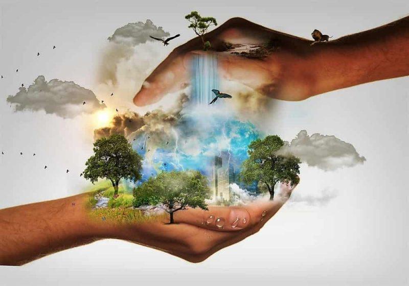 hari konservasi alam