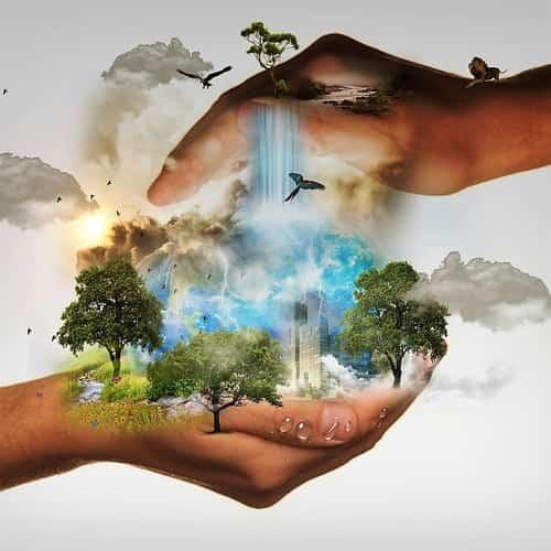 Konservasi Alam