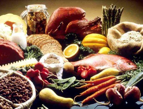 Makanan Gizi Seimbang