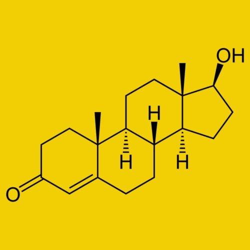 Struktur hormon testosteron