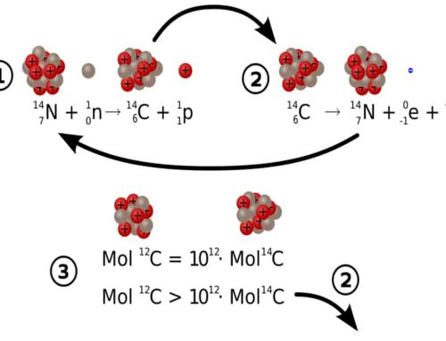 Radiokarbon 14 -Penanggalan Radiokarbon atau Karbon 14