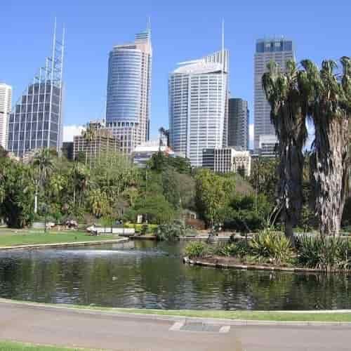 Royalbotanic gardens Sydney
