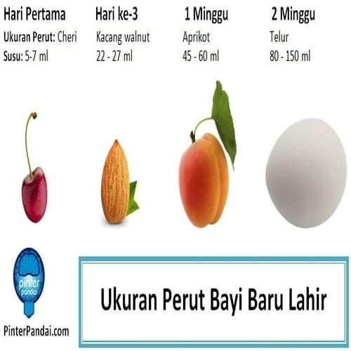 Ukuran perut bayi baru lahir dan jumlah susu yang perlu diberikan