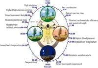 Gangguan Tidur Irama Sirkadian - Gangguan Jadwal Tidur - Penjelasan, Penyebab, Gejala dan Pengobatan