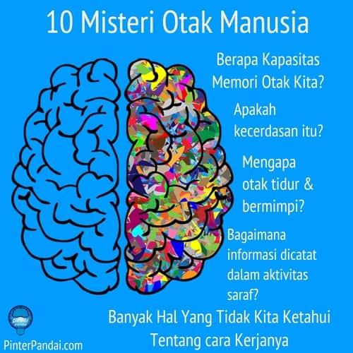 10 Misteri Otak Manusia - Banyak Hal Yang Tidak Kita Ketahui Tentang cara Kerjanya