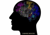 Cabang Biologi - Pengertian dan Contoh Ilmu Yang Mempelajari Apa?