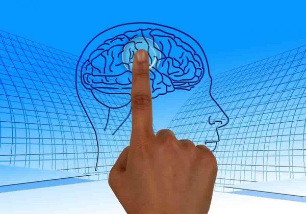 Penyebab Skizofrenia Beserta Contohnya