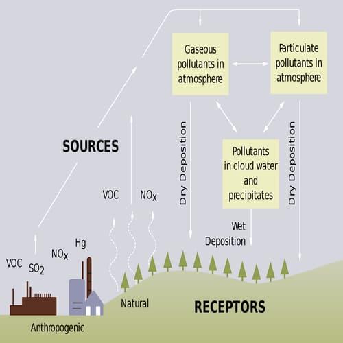 Siklus terjadinya hujan asam