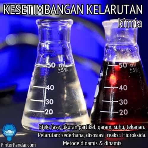 Kesetimbangan Kelarutan Kimia - Efek: fase, ukuran partikel, garam, suhu, tekanan. Pelarutan: sederhana, disosiasi, reaksi. Hidroksida. Metode dinamis & dinamis
