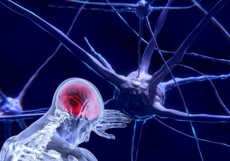 cairan serebrospinal otak