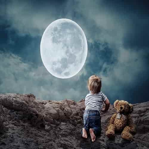 Mimpi boneka beruang